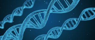 Генетический тест